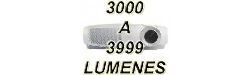 De 3000 a 3999 L